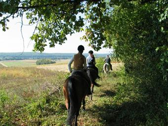 Riding in the Hungarian countryside